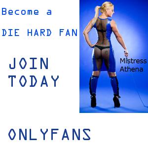 Fan site clip store